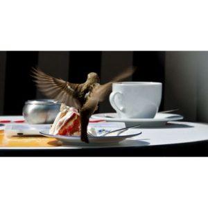 RC045 Kaffee und Kuchen